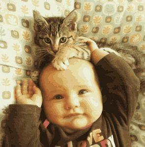 картина по номерам из фото с ребенком